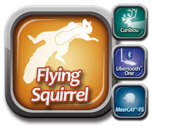 Flying Squirrel Suite